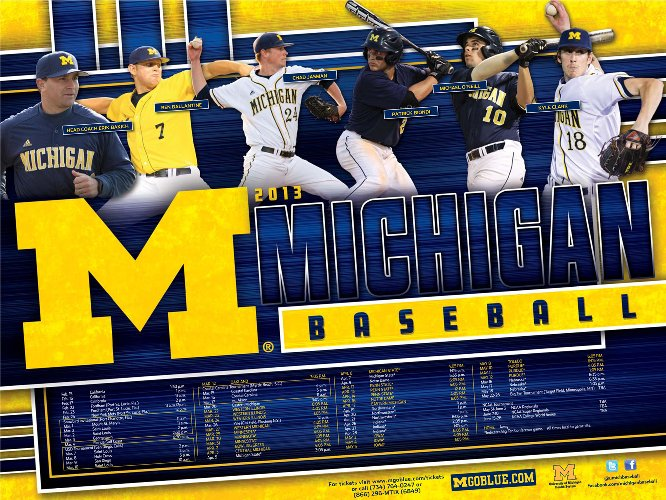 2013_michigan_BSB_poster