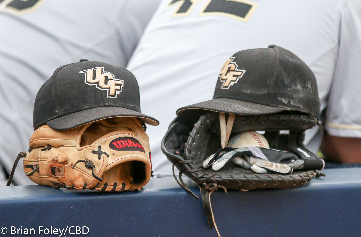 ucf baseball releases 2018 schedule - college baseball daily
